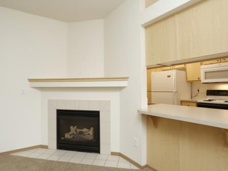 Fireplace apartment